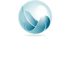 logo_domizen_contact